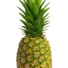 ItchyPineapple